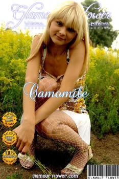 GlamourFlower - 2008-03-26 - Alicia A - Camomile (125) 2592X3888